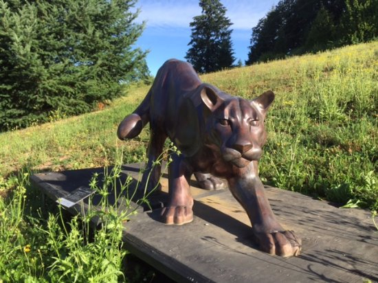 Allison Inn & Spa: Cougar sculpture one of many sculptures on the grounds