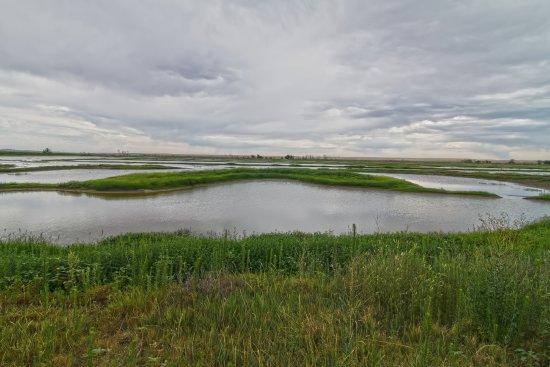 Buffalo Lake National Wildlife Refuge