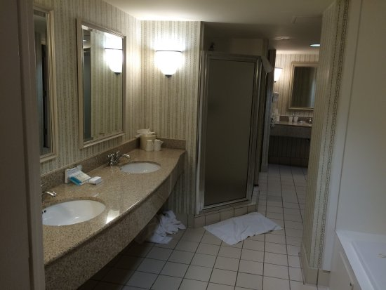 Hilton Garden Inn BWI Airport: King Jacuzzi Suite. Includes Pullout Sleeper  Sofa/2