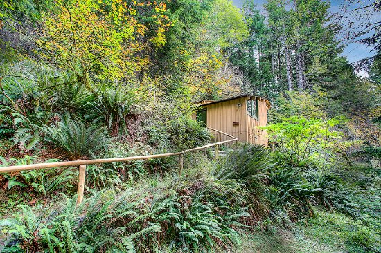 Deep Forest Cabins at Mt. Rainier : Maplewild