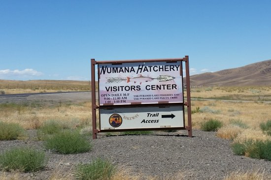 Nixon, NV: Hatchery and visitors center sign
