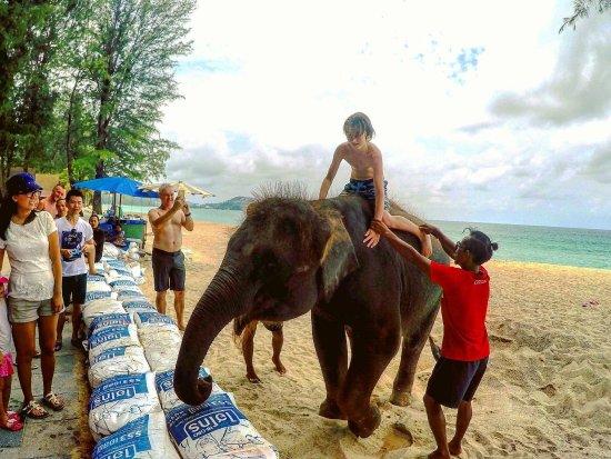 Dusit Thani Laguna Phuket: photo3.jpg