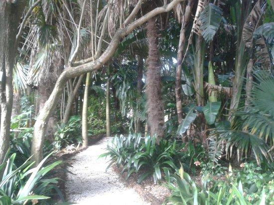 Parnell Rose Gardens: Bath into gardens