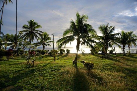 Daku Resort: Love the trees