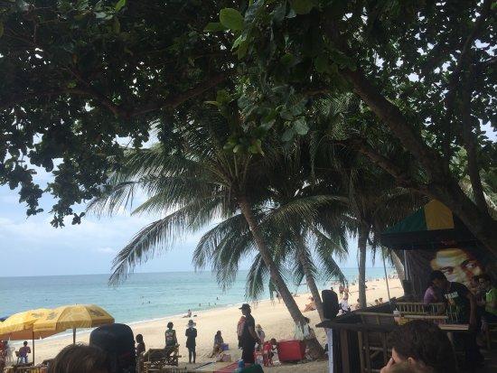 Bikini Bar: photo0.jpg