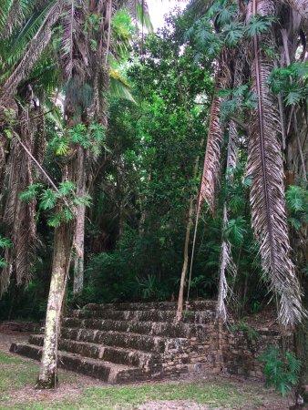 Кинтана-Роо, Мексика: Kohunlich, ruinas e selva
