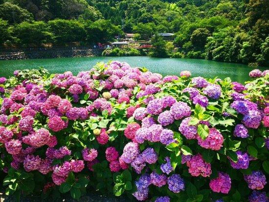 Katahara Tourist Association