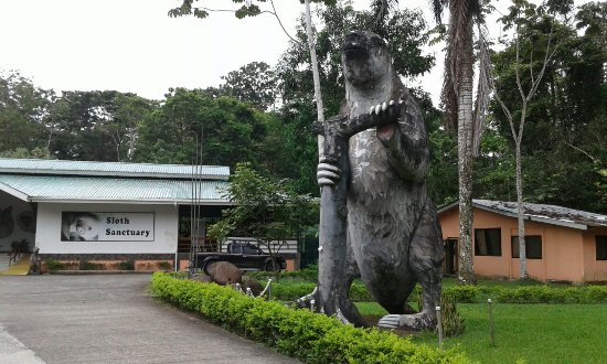 Sloth Sanctuary of Costa Rica (Aviarios del Caribe): 20160708_160049_large.jpg