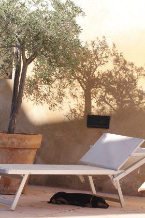 Villa Velleron: photo0.jpg