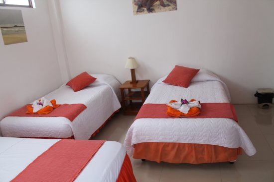 Gran Hostal Tintorera: Room with four twin beds