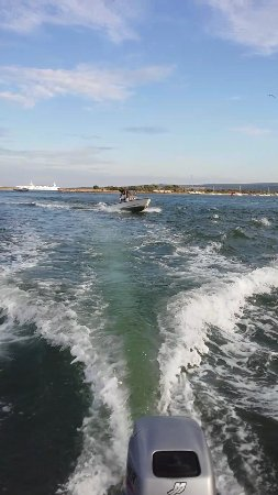 Poole Boat Hire: Shell Bay