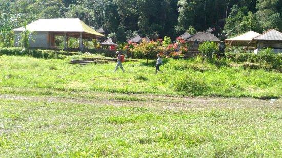 Munduk, إندونيسيا: P_20160711_104510_large.jpg