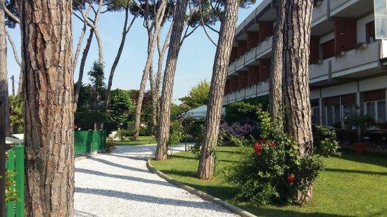 Hotel Und Gartenanlage Picture Of Le Pleiadi Forte Dei Marmi Tripadvisor