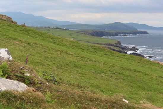 Fahan BeeHive Huts: View towards Dingle Harbour
