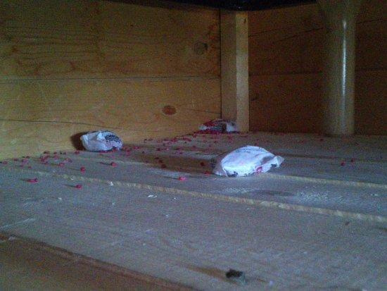 Saint-Sorlin-d'Arves, France : Mort aux rats sous le lit de la hute trappeur