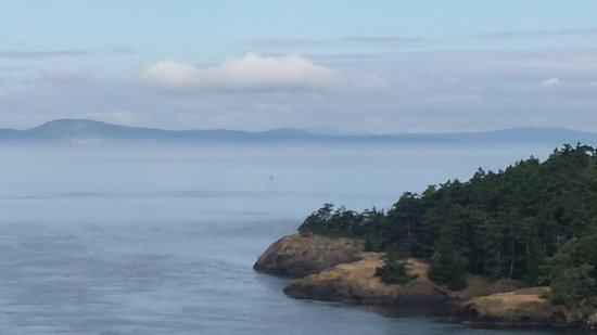 Oak Harbor, WA: Prettiest place between the islands.