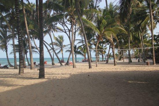 Amani Tiwi Beach Resort: Play, relax...