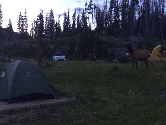 Timber Creek Campground: photo6.jpg