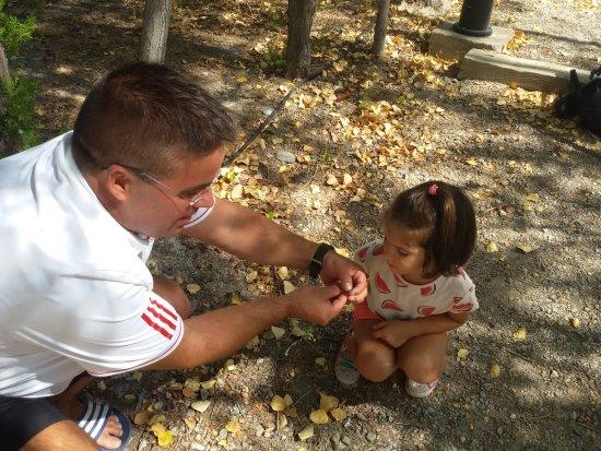 Laujar de Andarax, إسبانيا: Mi hija descubriendo la naturaleza con confianza por lo limpio del entorno.