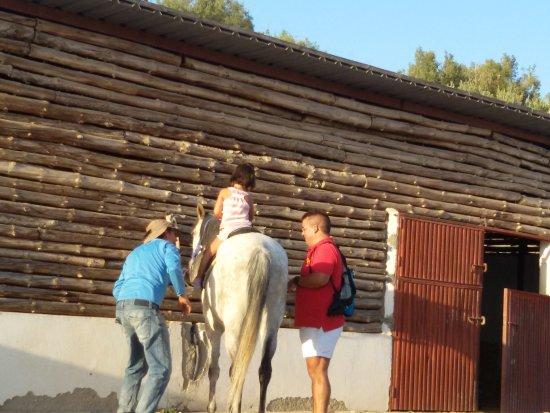 Laujar de Andarax, إسبانيا: El monitor de caballos, increible y encantador. De espaldas para preservar su intimidad.