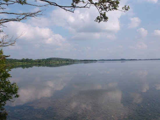 Multyfarnham, Irland: Beautiful Lough Owel from the forest walk