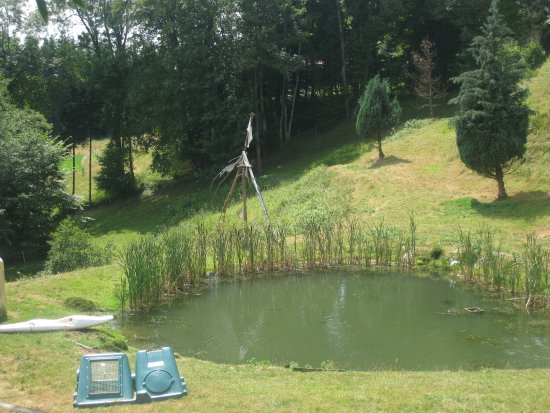La Petite-Fosse, France: the small lake in front of the house