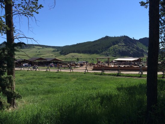 ‪‪Paradise Guest Ranch‬: Very gracious staff and beautiful location we loved our ride and tasty lunch during Longmire Day‬