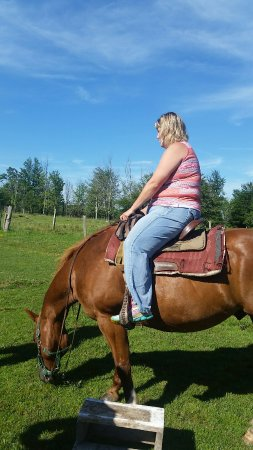 Timberline Riding Stables - Private Tours