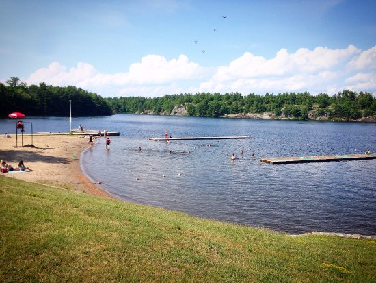 Gull Lake Rotary Park Great Place For A Swim