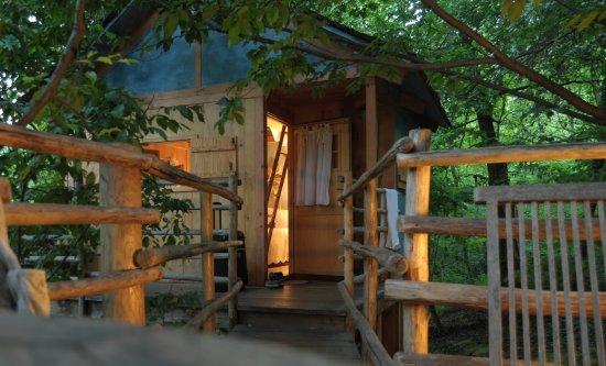 Piccola ma deliziosa la casa sull 39 albero toulipier foto - Il giardino dei semplici manta ...