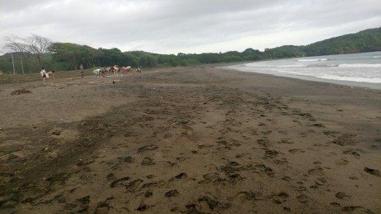 Playa Venao, ปานามา: IMG_20160709_192609_large.jpg
