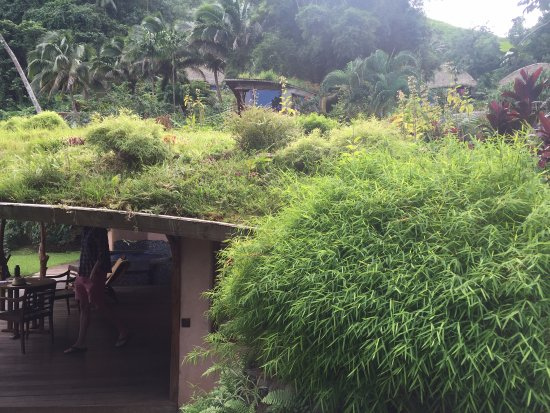 Teahupoo, Французская Полинезия: Vai Iti bungalow (I loved the garden roof)