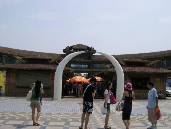 Dino Beach