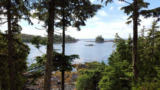 A Snug Harbour Inn: Blick zum Strand