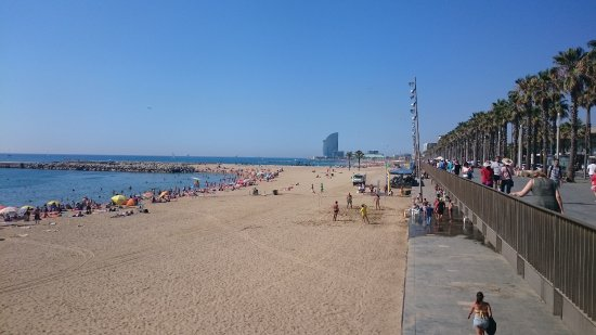 Praia de Somorrostro - Picture of Playa de Somorrostro, Barcelona - TripAdvisor