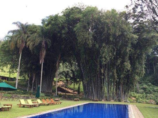 Ceylon Tea Trails: photo0.jpg