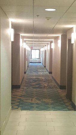 Holiday Inn Express Hotel & Suites Fort Worth (I-20): Well Lit Guestroom Corridor