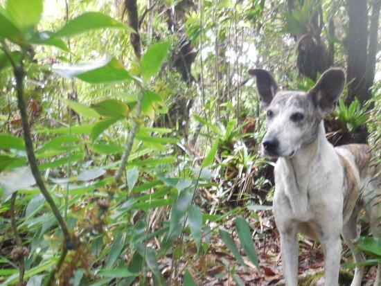 Ocotal, Nicaragua: Cerro Mogoton