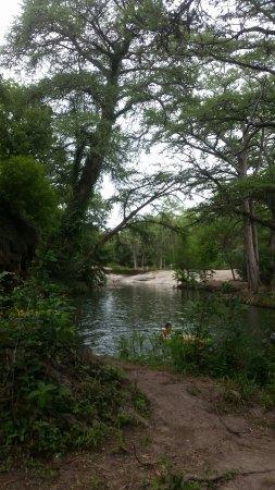 Spicewood, TX: Krause Springs