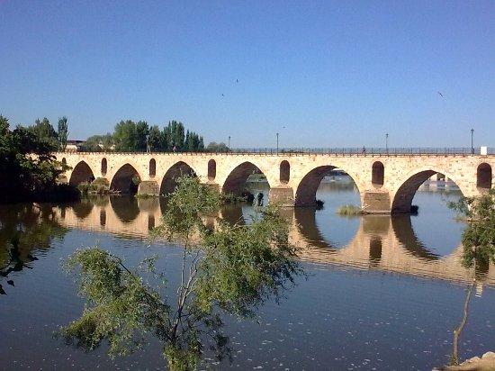 Province of Zamora, Espagne : Puente de Piedra, Zamora