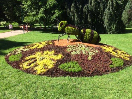 Parc de la Pépinière : Topiary