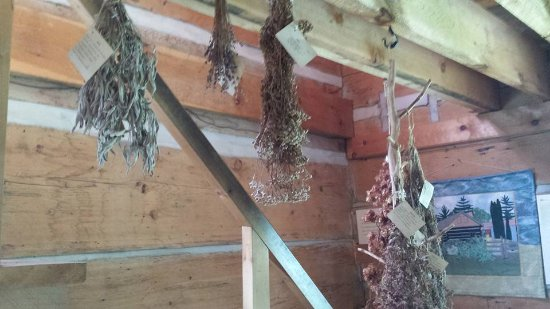 Port Carling, Канада: Herbs drying