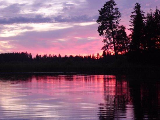 Skinnskatteberg, Σουηδία: Sunset during the Beaver tour (Wild Sweden)