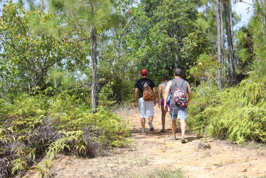 Blancaneaux Lodge: Heading off for a hike