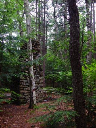 Jaffrey, NH: Remote Site 2 - Gilson Pond Campground