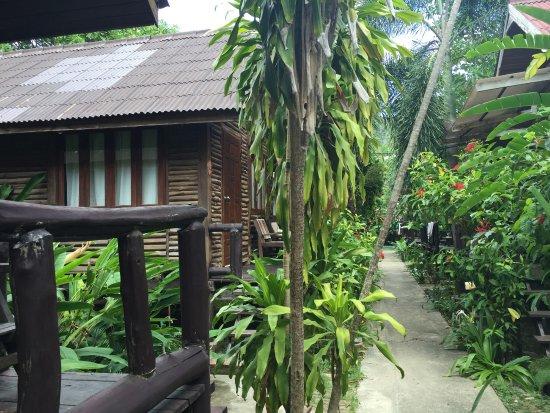 Banana Garden Home照片