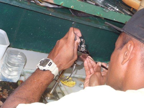 Gauguin's Pearl Farm: Opération délicate : insertion du nucléus dans l'huître perlière