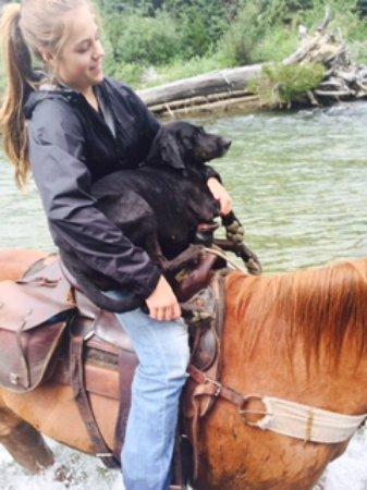 Cranbrook, Canadá: Princess Dixie tired of going thru rivers