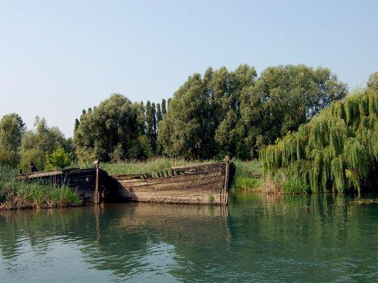 Casier, Italia: Alcuni burci tra la vegetazione