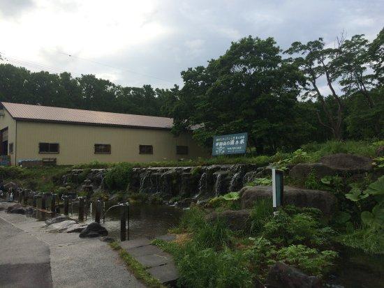 Makkari-mura, Japan: photo1.jpg